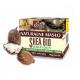 Masło Shea Bio słoik 50 ml