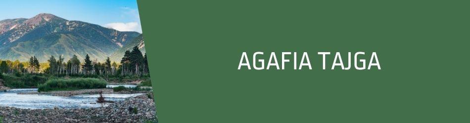 ▷ Agafia Tajga - naturalne, syberyjskie kosmetyki  - u nas w sklepie | FitoUroda.pl - internetowa drogeria naturalna